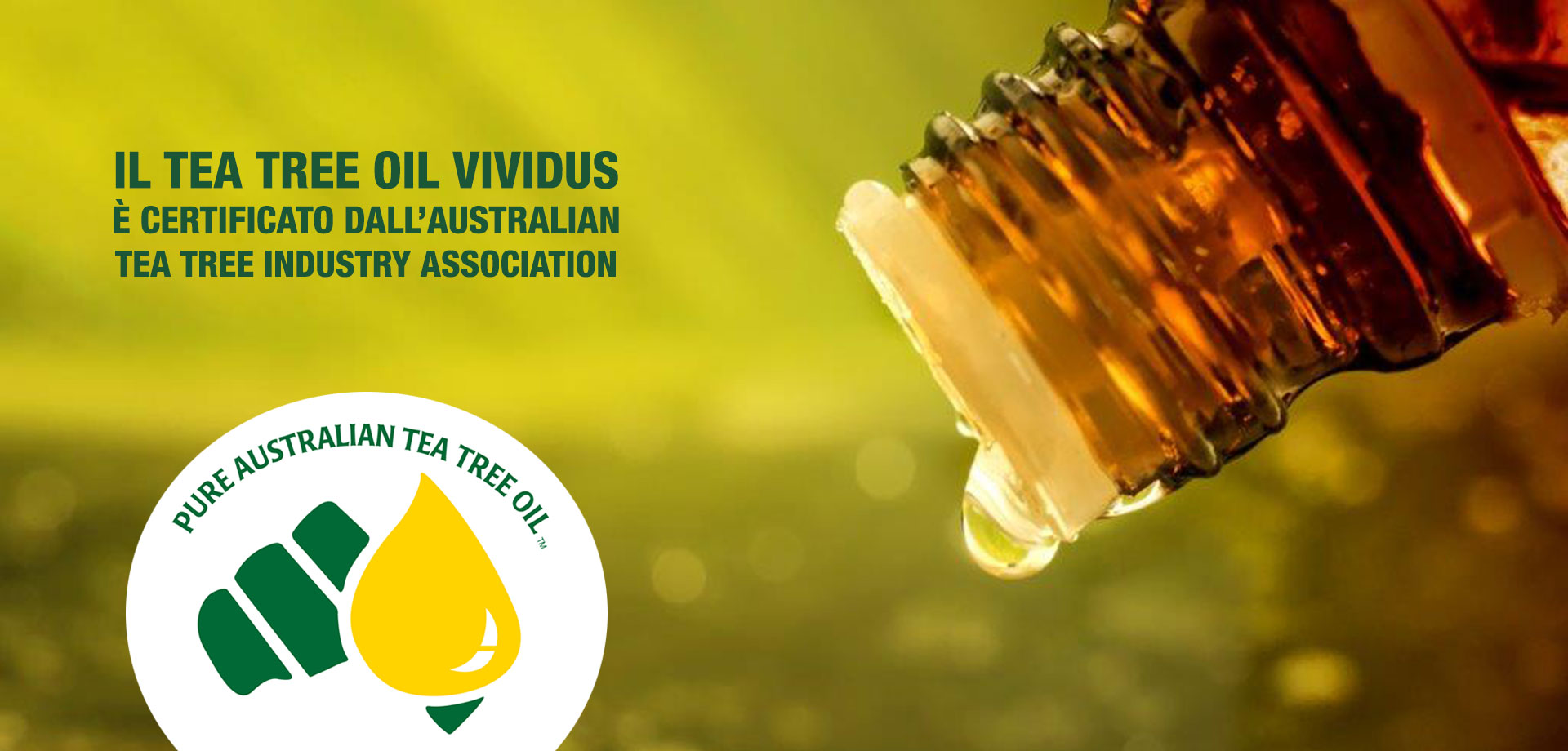 Tea Tree Oil Vividus